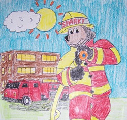 fire safety education rock hill sc color web