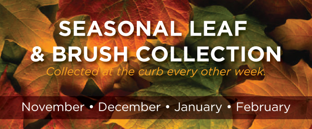 Seasonal Leaf Collection Nov 2018-Feb 2019